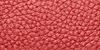 Piel Roja
